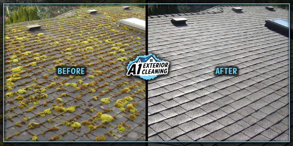 If left untreated, moss will grow and lift shingles, compromising the permeability of your roof.