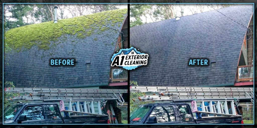We remove moss from all types of homes, No roof is too steep!