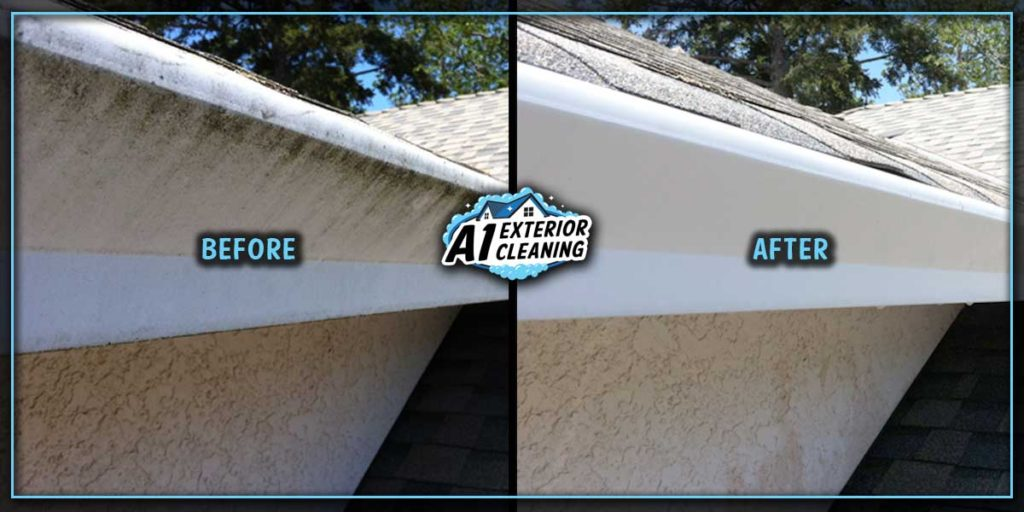Freshly washed gutters can revitalize a house and keep it looking its best.