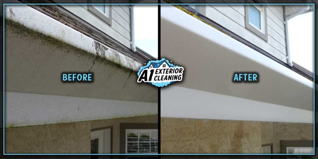 Regular gutter cleaning prevents unsightly staining and discolouration.