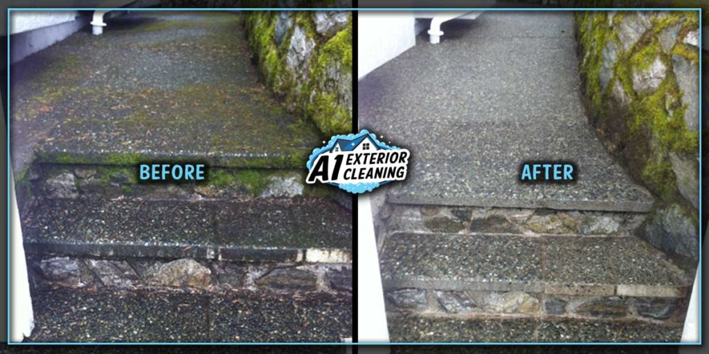 Pressure washing removes slippery moss and algae along walkways around your home.