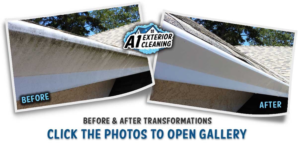 A1 EXTERIOR CLEANING - EXTERIOR GUTTER CLEANING B&A