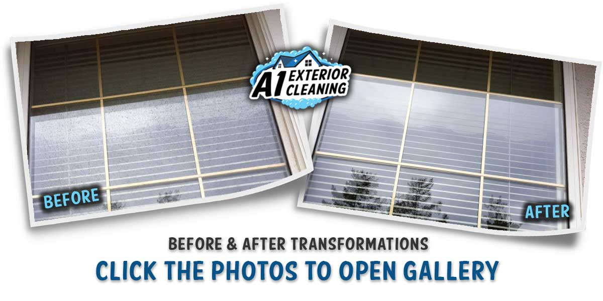 A1 EXTERIOR CLEANING - WINDOW DETAIL B&A