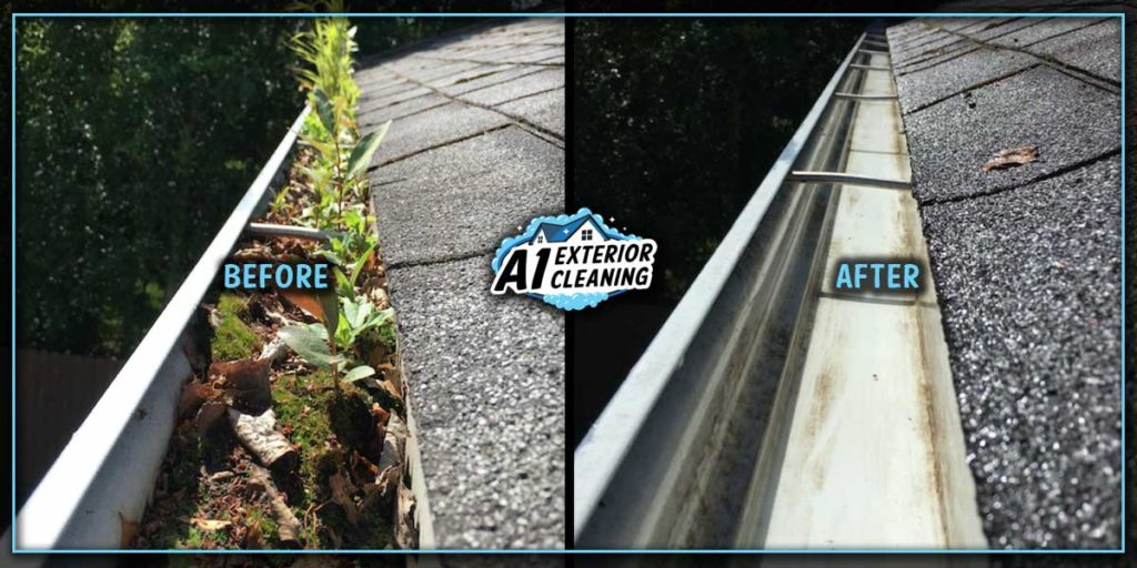 If plants are growing in your gutters, it might be time to get them cleaned.