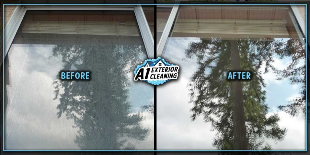 A freshly washed window can visually open up a space and brighten your day!