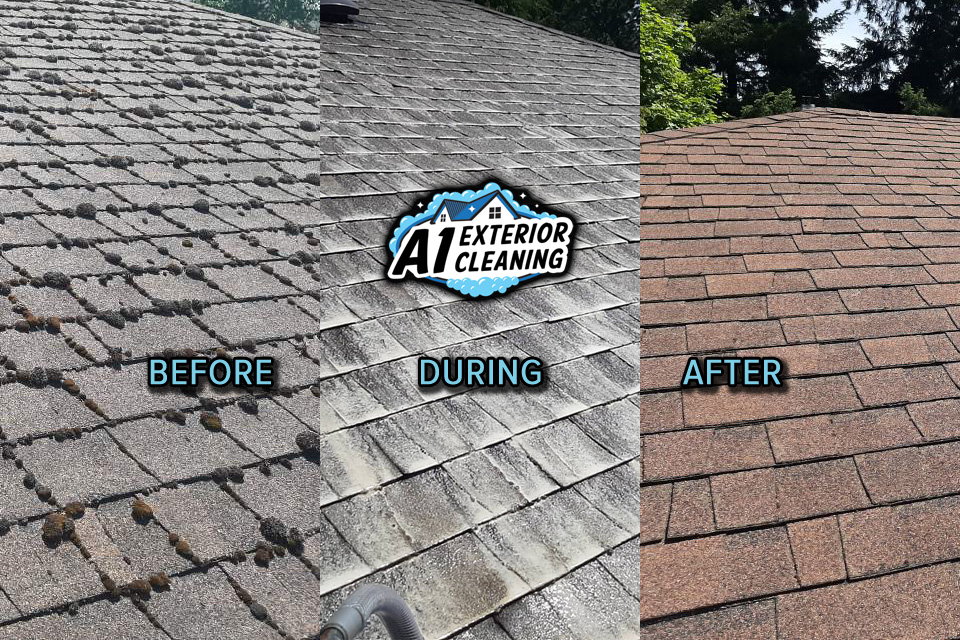 roof-before-during-after-01